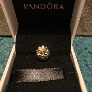 Pandora clover clip
